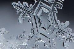 Snow Gems Vertical